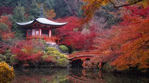 viaggio-di-nozze-in-Giappone